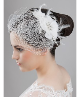 Beautiful fascinator / Birdcage