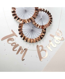 Rose Gold Hen Party Bunting Backdrop - Team Bride