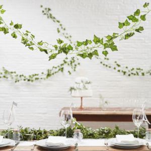 Decorative Vines | Beautiful Botanics