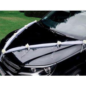 Car decoration (15-3005-1-1)